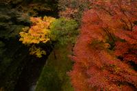 Japan Photography Tours