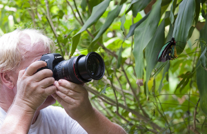 A photographer taking a photo of a butterfly